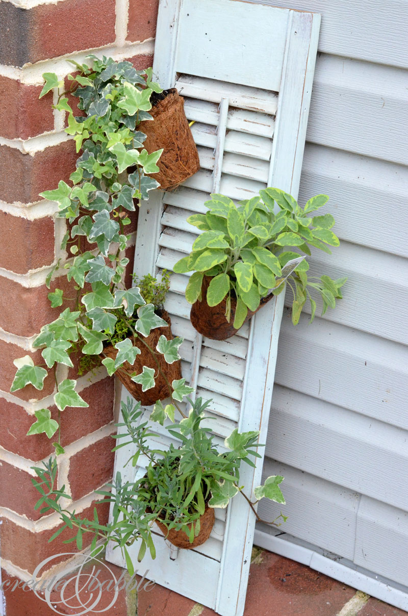 herb garden on a shutter_createandbabble.com