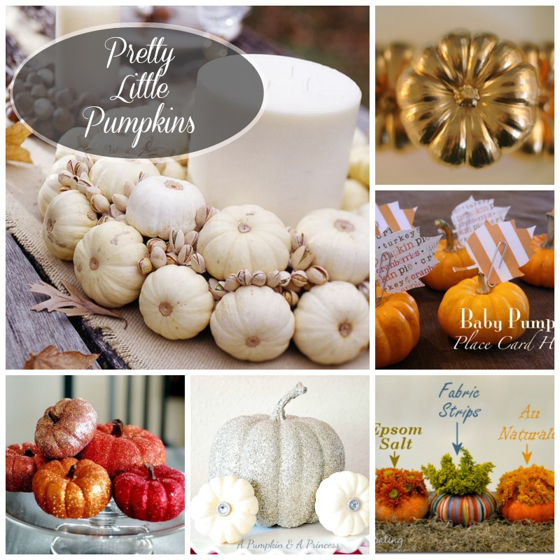pretty little pumpkins decorating ideas_createandbabble.com