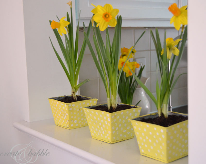 easy-diy-painted-pots-createandbabble.com
