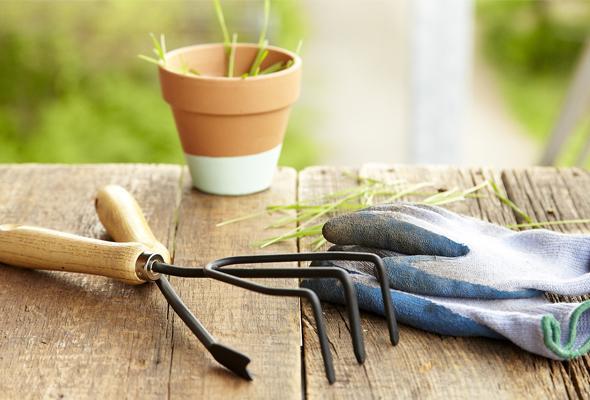 5-helpful-weeding-tips-1-size-3