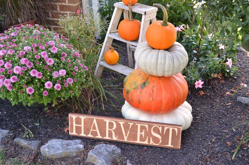 harvest-sign-1