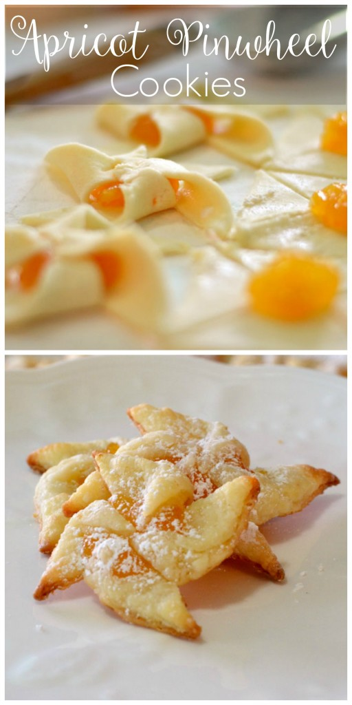 Apricot Pinwheel Cookies_createandbabble..com