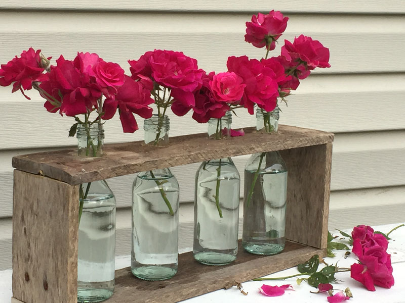 DIY Laboratory Flower Vases in a wooden display rack