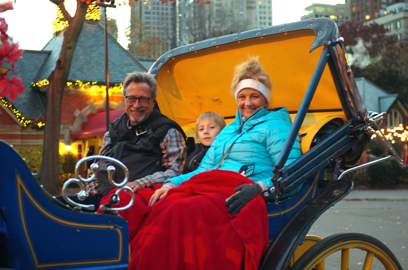 nyc-trip-horse-carriage-ride