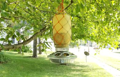 How To Create A Fall Mason Jar Hanging Bird Feeder