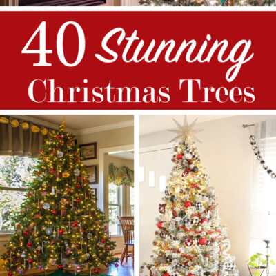 40_Stunning_Christmas_Trees_pin